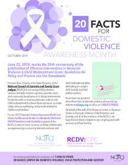 20 Facts for Domestic Violence Awareness Month