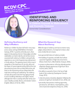 Cover Image for Identifying and Reinforcing Resiliency in Children Exposed to Maltreatment and Domestic Violence: Some Initial Considerations