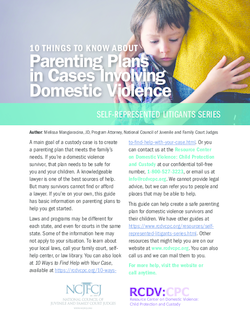 10 Things to Know About Parenting Plans in Cases Involving Domestic Violence Cover